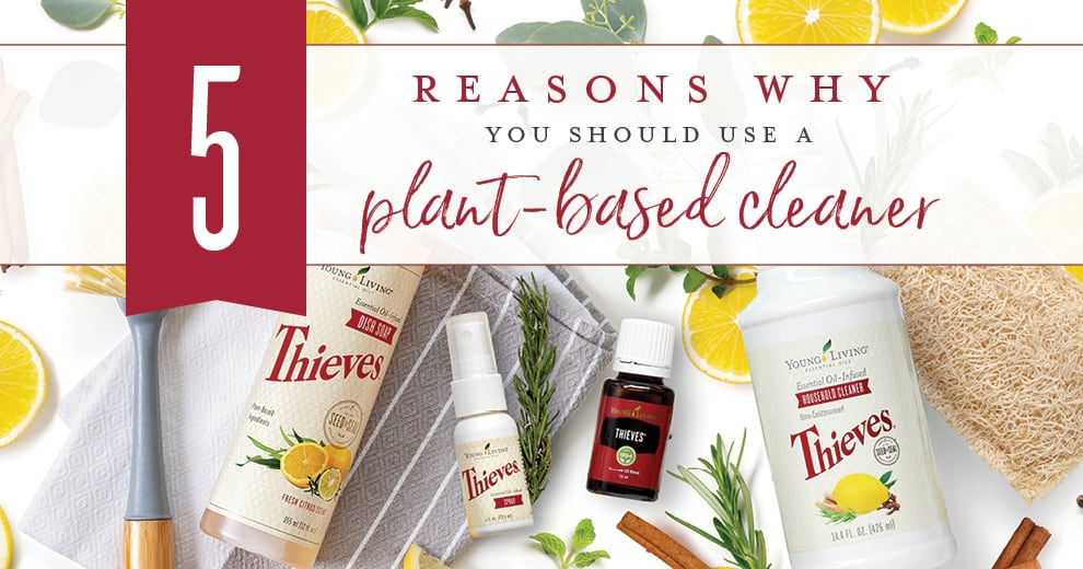 5 reasons You Should Use A Plant Based Cleaner