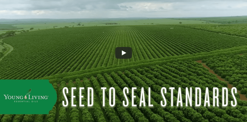 seed to seal standards